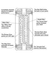 Double Hole Cup Masturbator Image 3